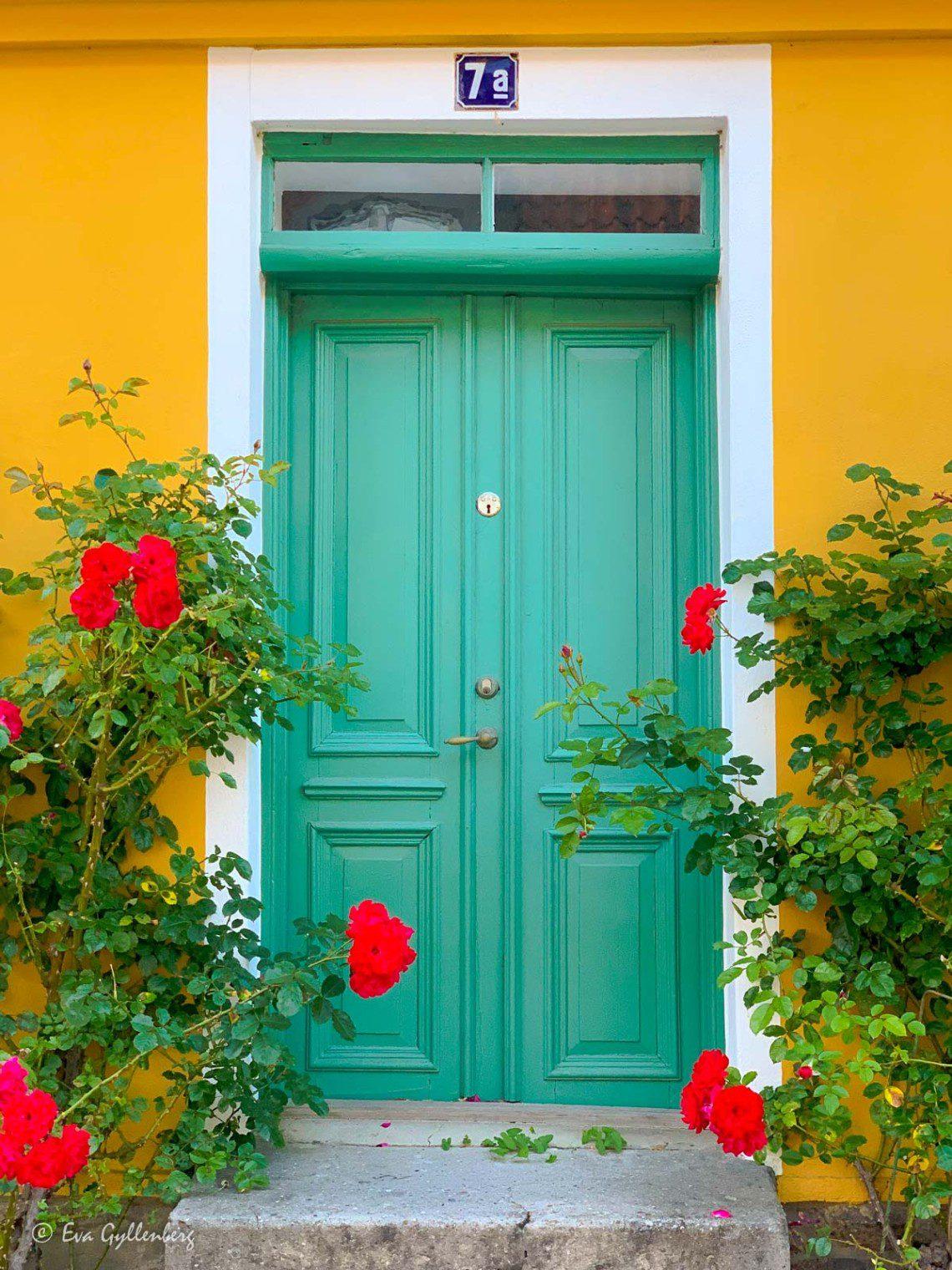 Stockrosor vid grön dörr i gamla Lund