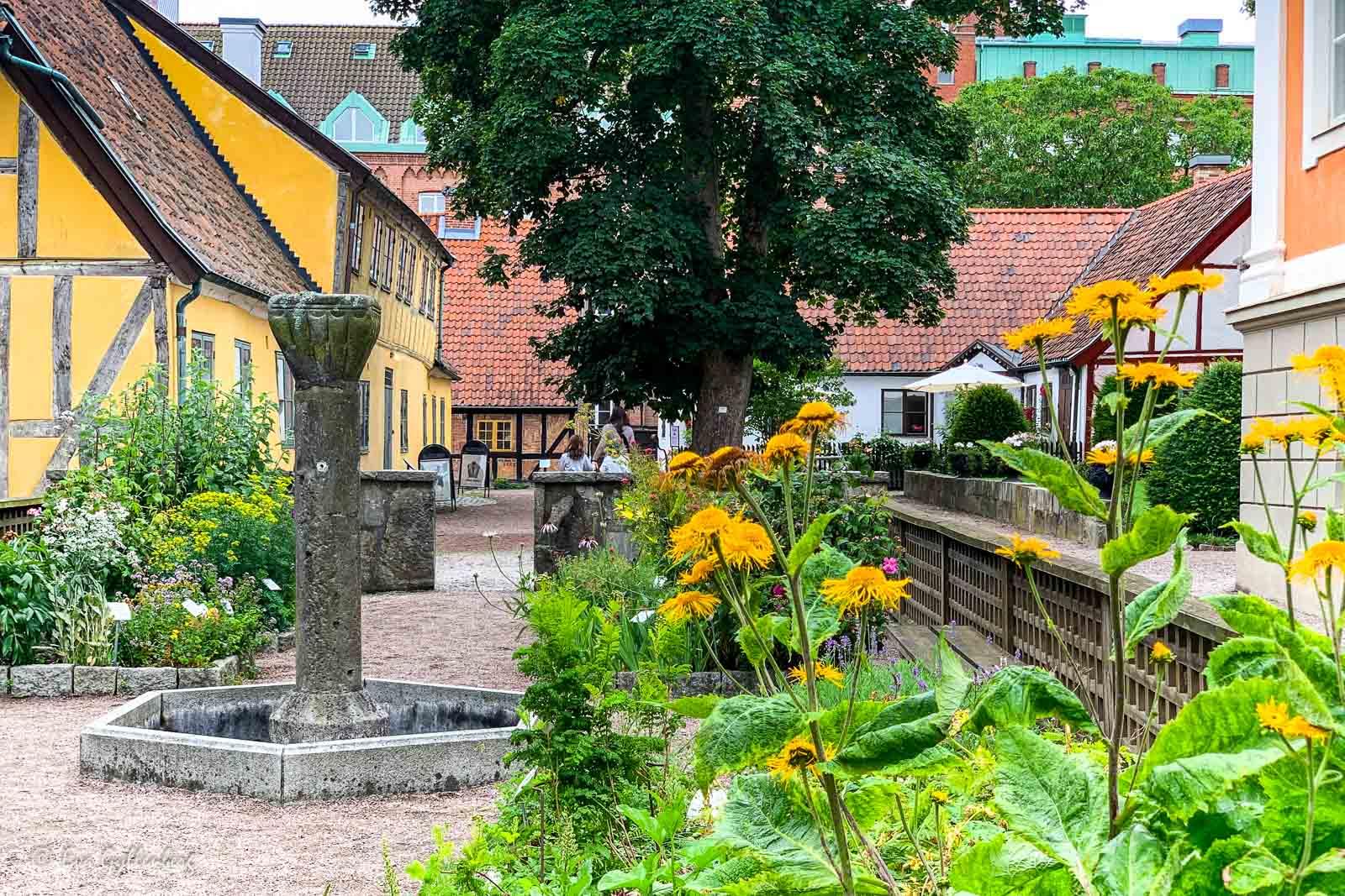 Grönskande blomsterlådor bland husen i Kulturen i Lund