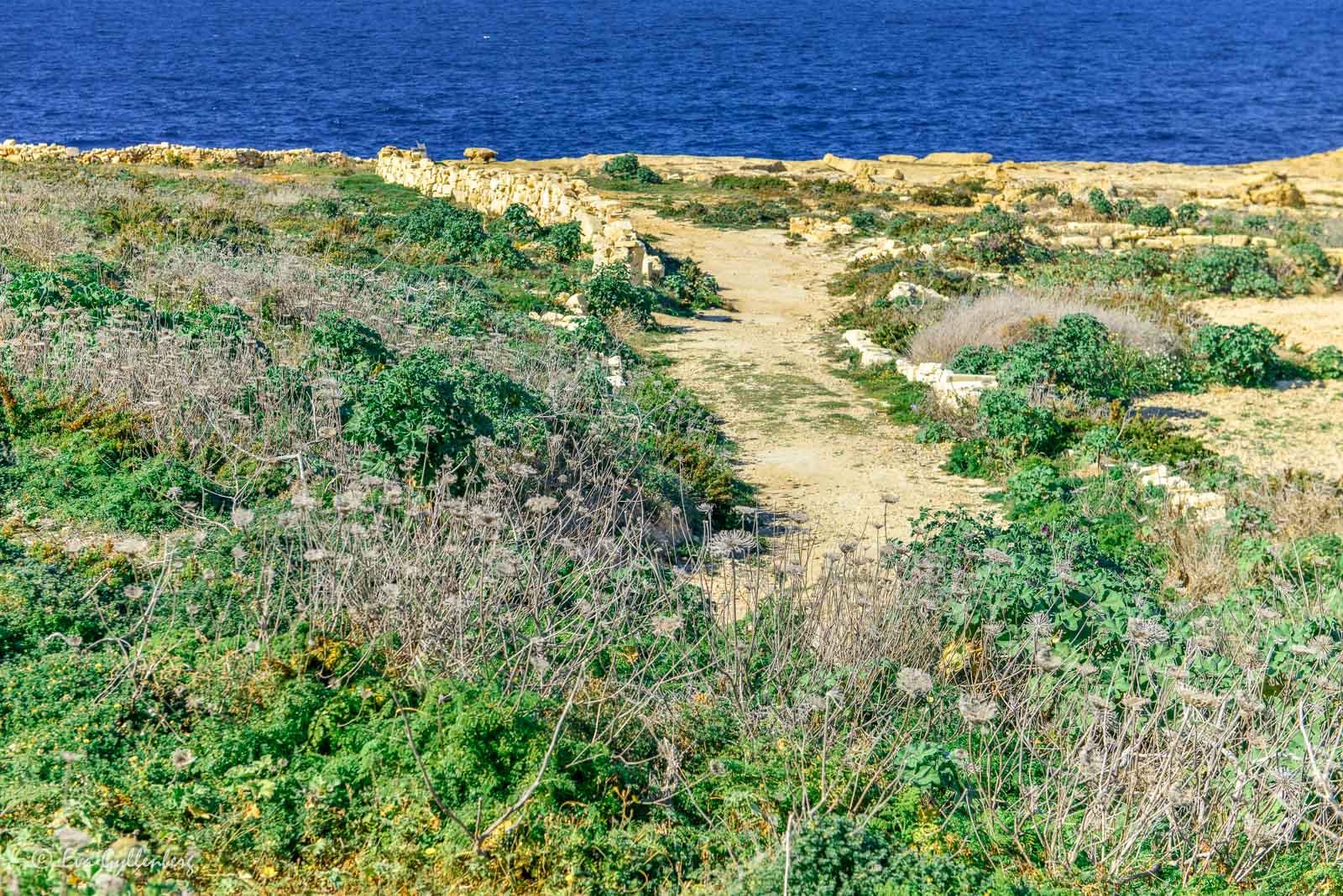 Dålig väg till viken Wied il-Ghasri på Gozo