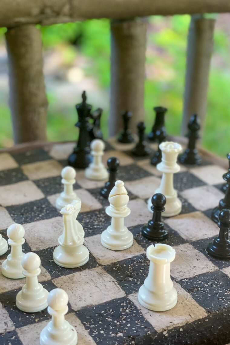 Schackbräde med pjäser