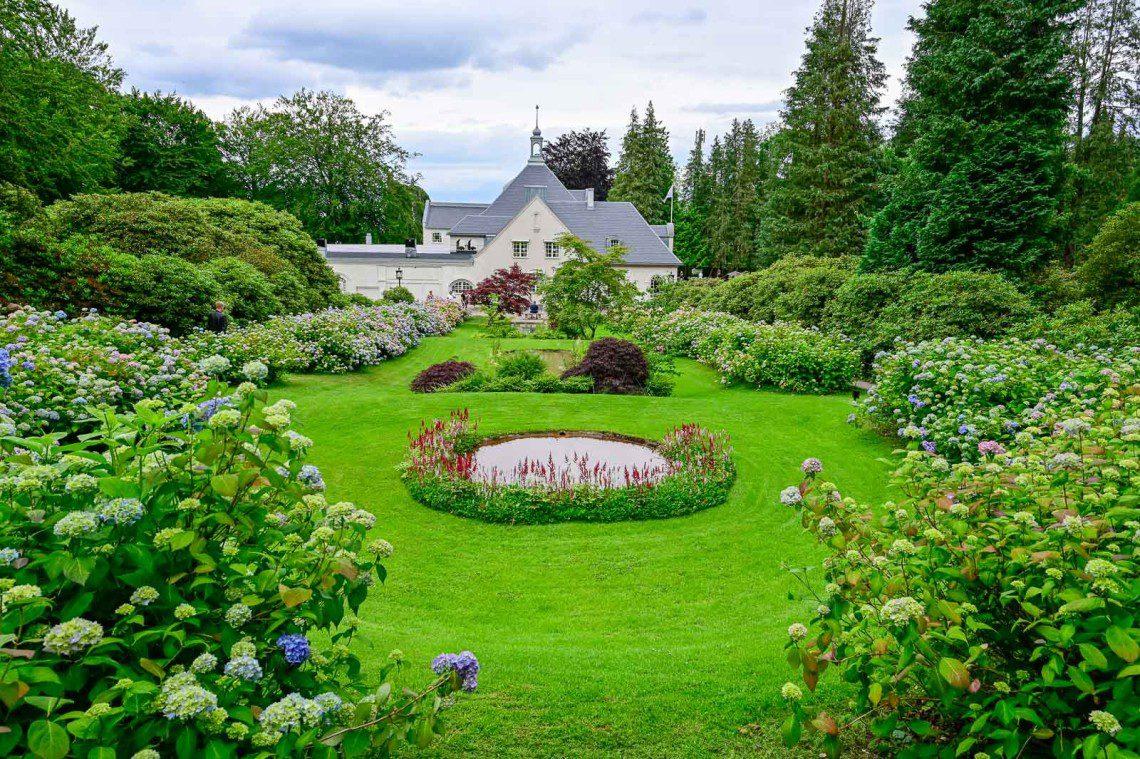Hortensiaträdgården med utsikt över huset