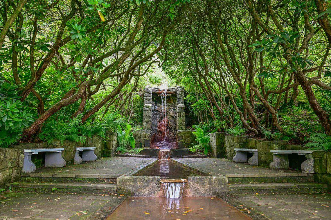 Fontän med rinnande vatten i en tunnel av träd