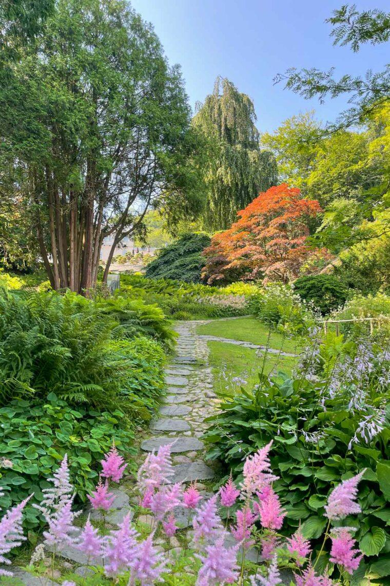 Rosa och röda detaljer i den japanska trädgården