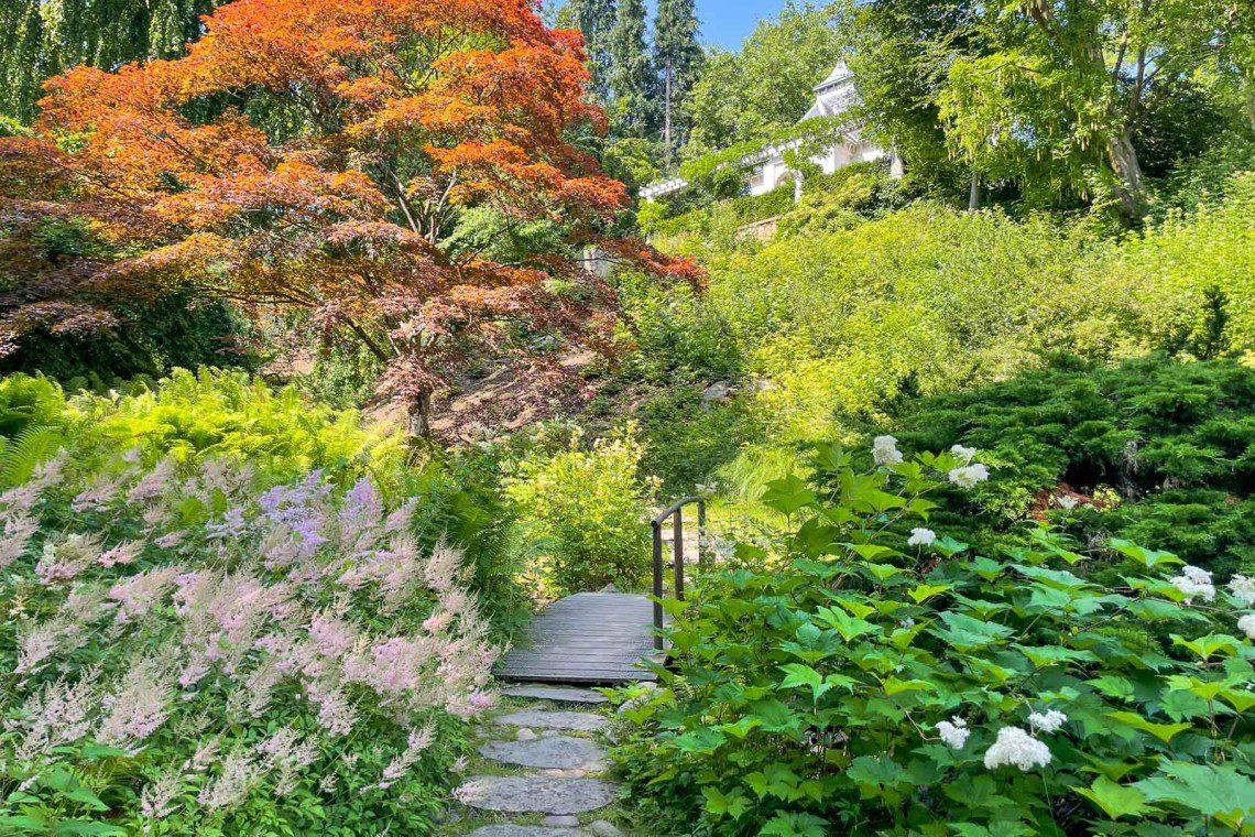 Färgglatt i den japanska trädgården