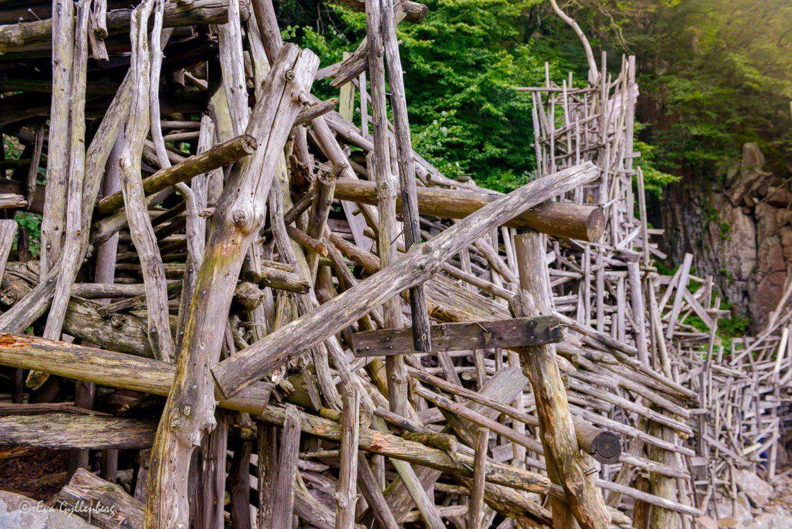 Ett plockepinn av pinnar och plankor och drivved