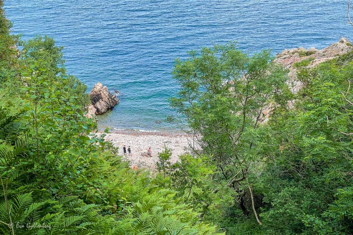 Utsikt över en vit strand med klarblått hav
