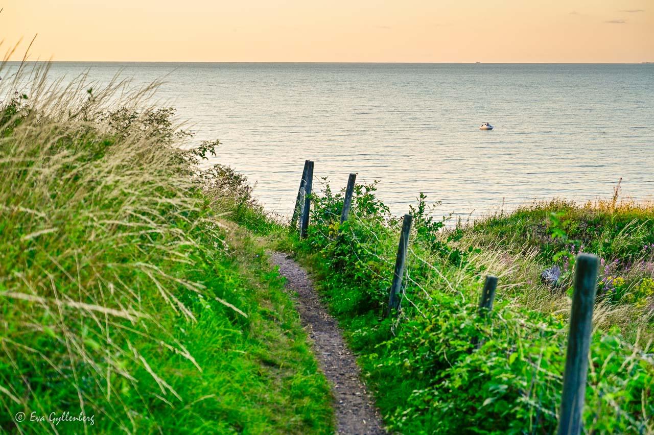 Stig med staket med utsikt över havet