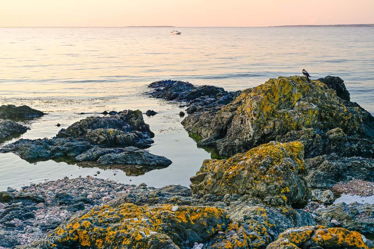 Lavbeklädda havsklippor med havet och en liten båt