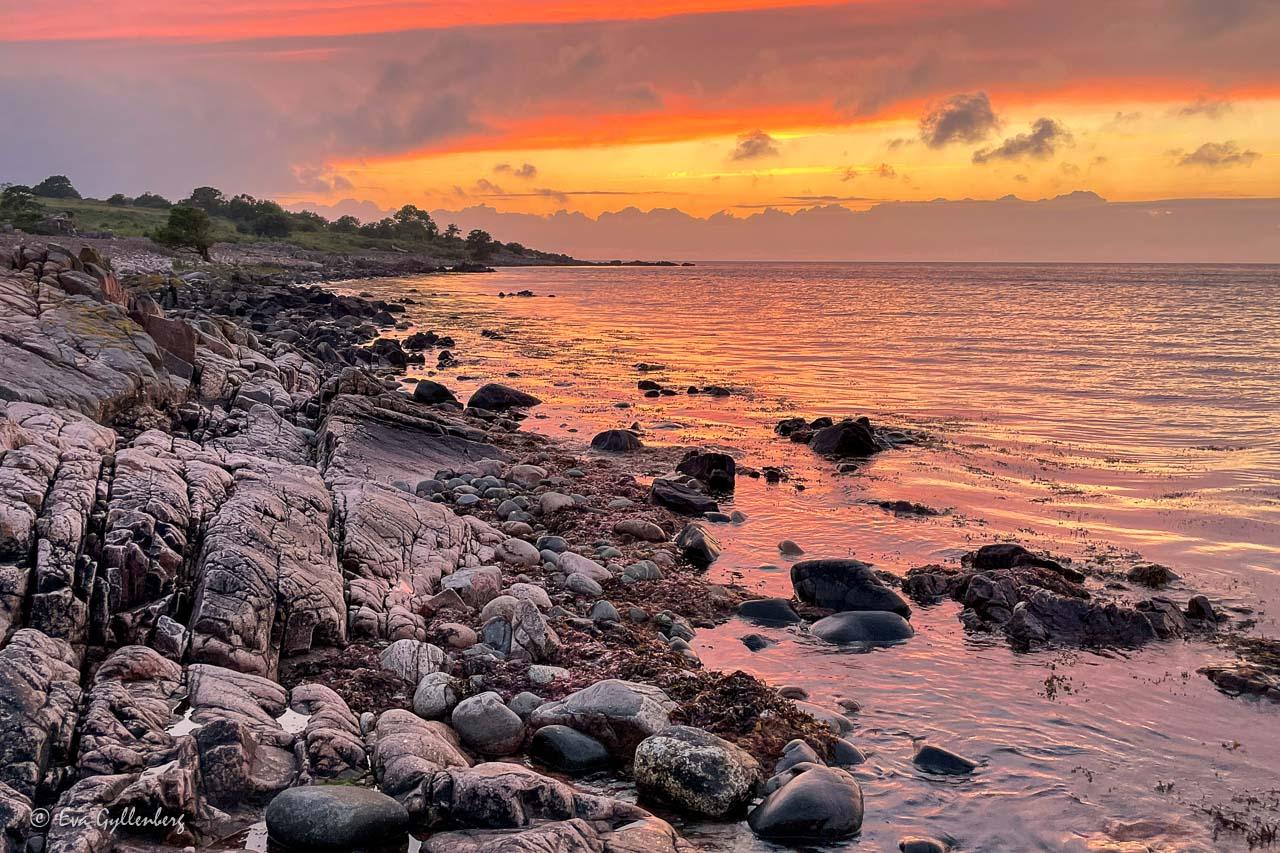 Dramatisk rosa-gul solnedgång vid Skärets klippiga kust