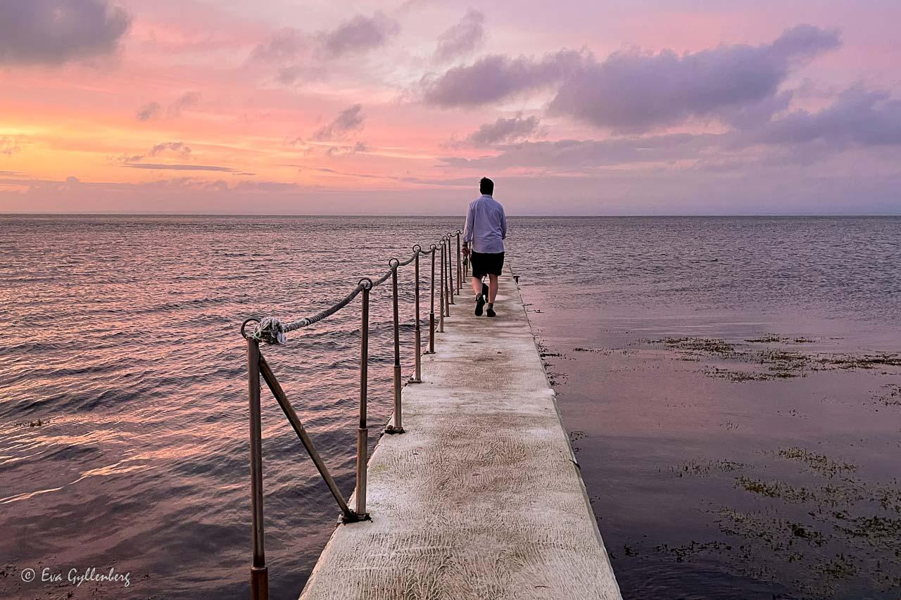 Man med hund på stenbrygga i solnedgång med rosa himmel
