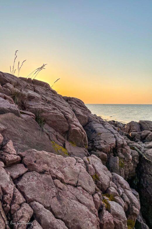 Röda klippor med hav i solnedgång