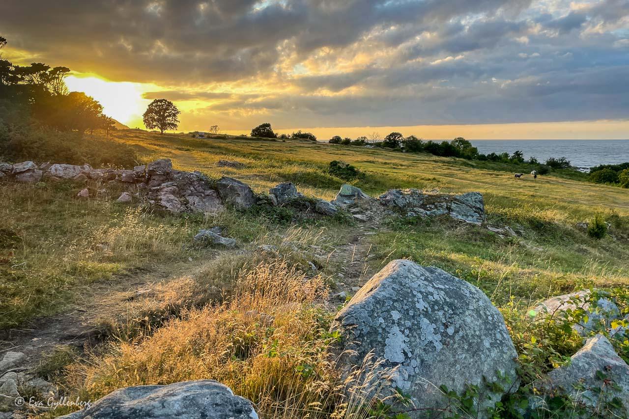 Nabbens naturreservat i solnedgång