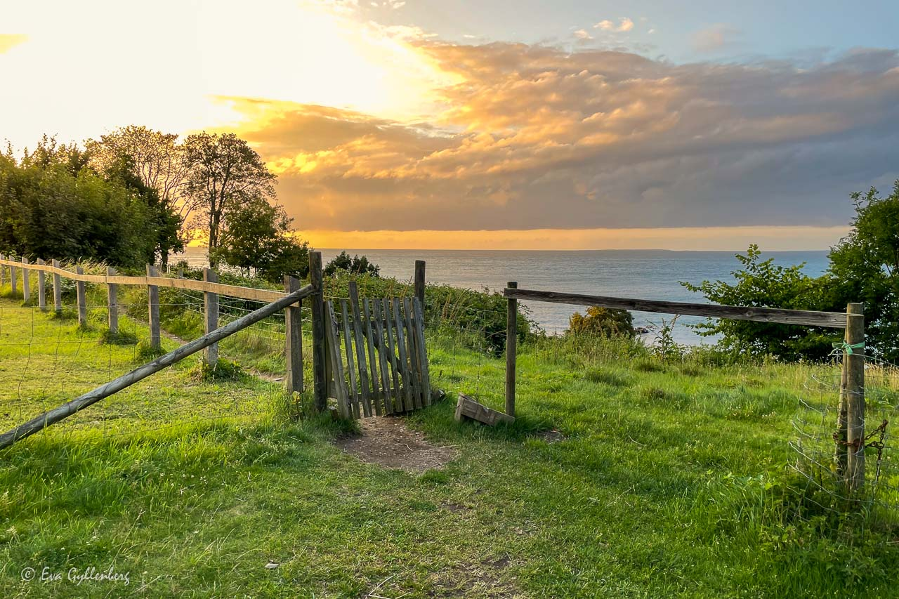 Solnedgång och grind med havet i bakgrunden