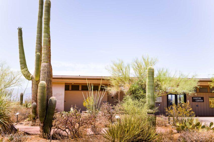Visitor center i Saguaro national park